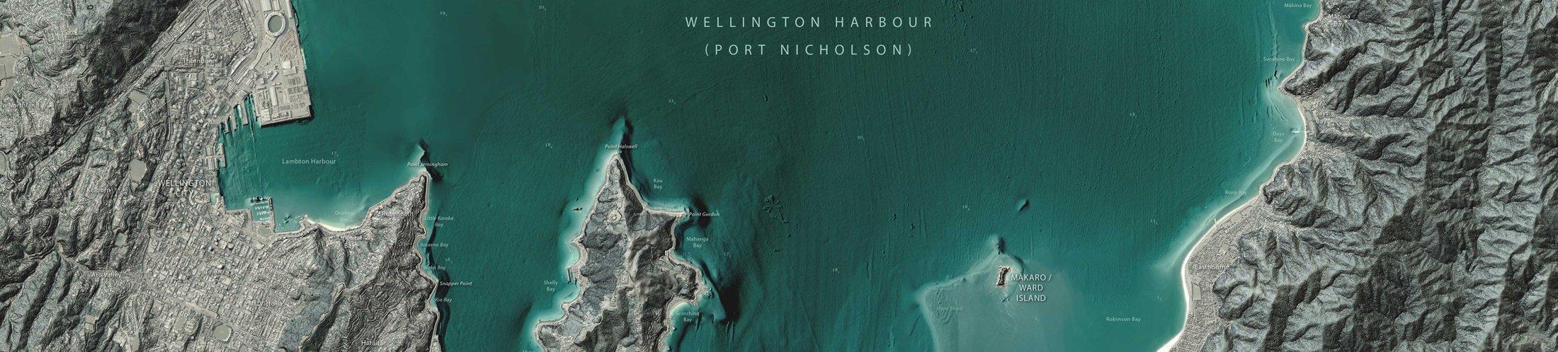 wellington_harbour_button